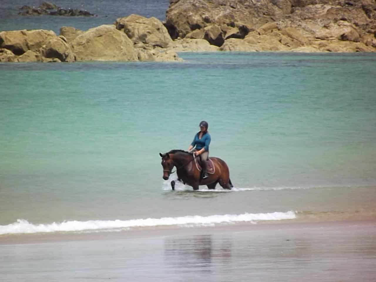 cheval mer baignade thalassothérapie thalasso jennifer calme soins rochers