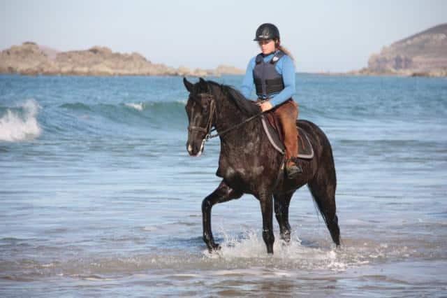 cheval mer balnéothérapie thalassothérapie