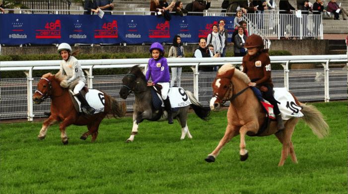 courses poneys casaque numéro hippodromes spectateurs