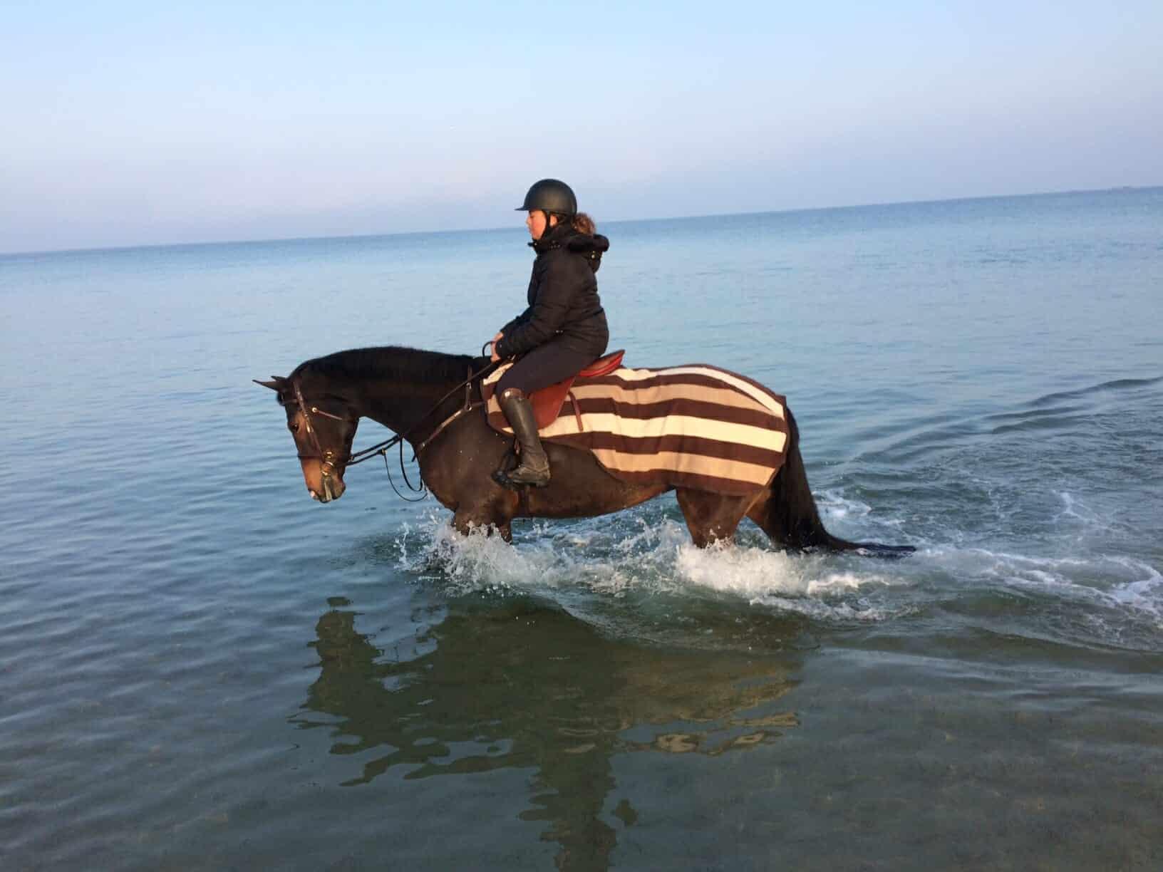 cheval thalasso quincy baignade bretagne