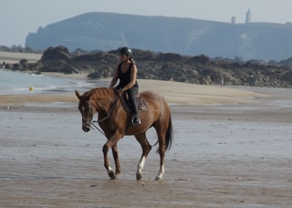 cheval mer travail valorisation musculation souffle cardio thalassothérapie thalasso jennifer calme